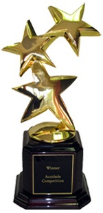 In The Zone TV Wins 3 Accolade Awards in 2008